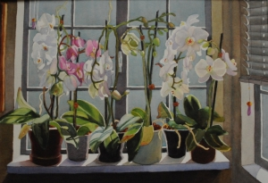 Six Potted Orchids
