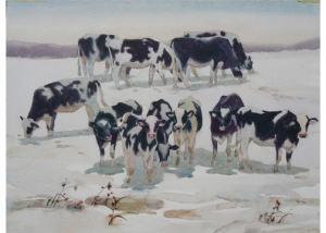 Washington County Cows in Snow